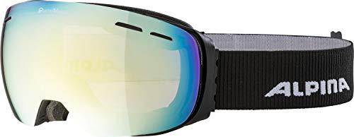 ALPINA Erwachsene Granby QVMM Skibrille, Black matt, One Size