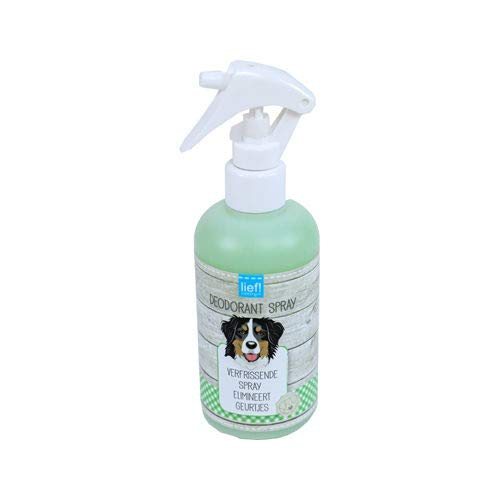 LIEF! Deodorant-Spray - 250 ml