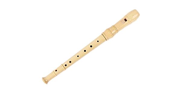 Students Flute Beginner Flutes Flute Music Instruments 8 Holes
