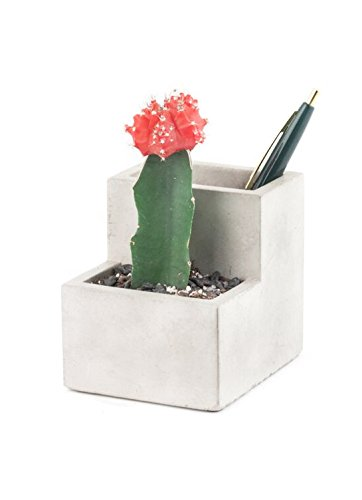 small-concrete-desktop-planter