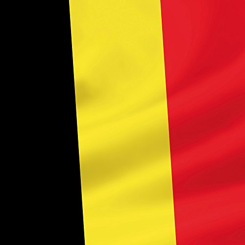 Apple iPhone 4 Housse Étui Silicone Coque Protection Drapeau Belgique Belgique Drapeau Sideflip Sac
