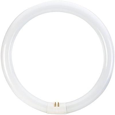 Prilux fluorescencia - Tubo circular trifosforo fluorescente 32w g10q