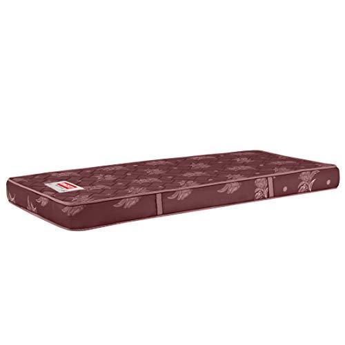 SLEEPSPA Day Dreamer Back Friendly 4 Inches Coir Foam Mattress (75X36X4)
