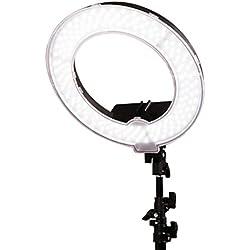Creative Light- LED-Füllung-Licht 15-Zoll-stufenlos verdunkelnde Doppelfarbtemperaturfotografie-Kamera-Foto-Beleuchtung-Make-up-Live-Landschaftsgestaltung-Lampe