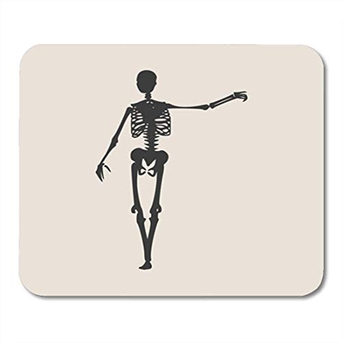my Human Skeleton Posing Halloween Party Design Backbone Biology Body Bones 11.8