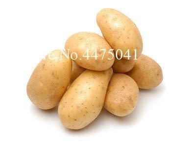 Plentree Samen Paket: Hot Frische Bonsai 120Pcs Gemischte Kartoffel Bonsai Ernährung Grün Gemüse für Haus & amp; Garten ing Kartoffel Bonsai Absorbing: 8