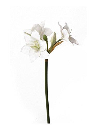artplants - Künstliche Amaryllis Amalia, weiß, 60 cm - Deko Ritterstern Blume/Kunst Hippeastrum Blüte