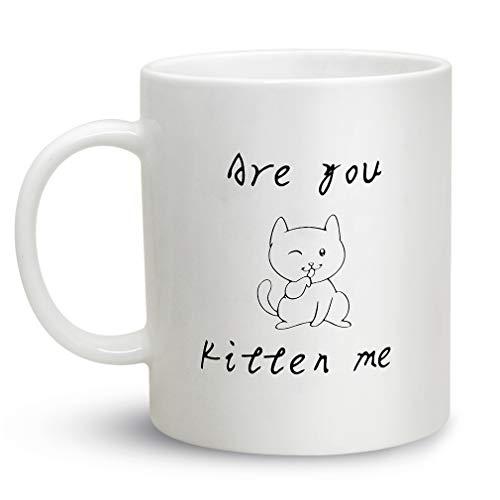 us Keramik, lustige Katze, Kaffeetasse, Geschenk für verrückte Katzen, Damen, Herren, Weiß, 312 ml a ()