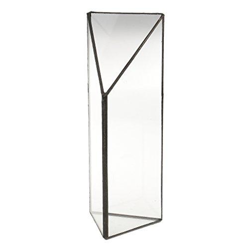 magideal flex 242032- terrario di vetro vaso per piante di fern moss cactus decorazione da giardino terrazzo