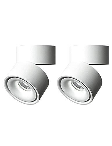 10W COB Plafonnier Réglable Spots Dimmable LED Downlight,Aluminium,Spot Plafond,Luminaire de Plafond,Lampe Murale,360 °Réglable,3000K Blanc Chaud,6000K Blanc Froid,Zhhlinyuan