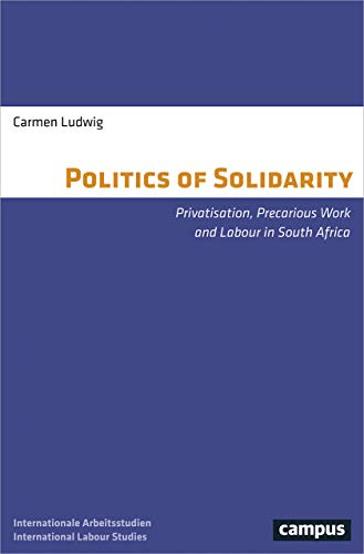 The Politics of Solidarity: Privatisation, Precarious Work and Labour in South Africa (Labour Studies)