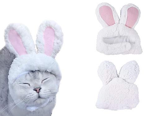 Kaninchen Hunde Für Kostüm Ohren - LeRich Kostüm Kaninchen Hut mit Ohren für Katzen und kleine Hunde Party Kostüm Zubehör Kopfbedeckung