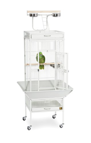Prevue Hendryx 3151C Pet Products Wrought Iron Select Bird Cage, Chalk White,18'' x 18'' x 57'' 3