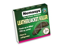 nemasys-leatherjacket-killer-spring-application-double-strength-treats-50sqm