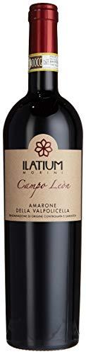 """ILatium Morini Amarone delle Valpolicella """"Campo Leòn"""" DOC Cuvée 2012 Trocken (1 x 0.75 l)"""