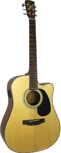 bristol-bd-16-chitarra-elettroacustica