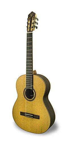 apc-instruments-9c-guitarra-clasica