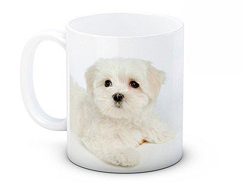 Maltese Terrier Bichon Chien Chiot – De Haute Qualité Tasse À Thé Café