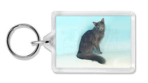 Advanta - Keyrings Silver Grey Javanese Katze Foto Schlüsselbund TierstrumpffüllerGeschenk -