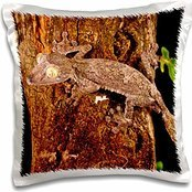 Lizards - Giant Leaf-tailed Gecko lizard, Madagascar - David Northcott - 16x16 inch Pillow Case (Tailed Leaf Gecko Giant)