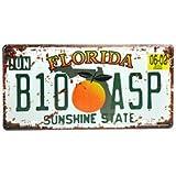Cartel de chapa Placa metal tin sign retro nostálgico metalicas Florida Sunshine State matrícula del coche naranja