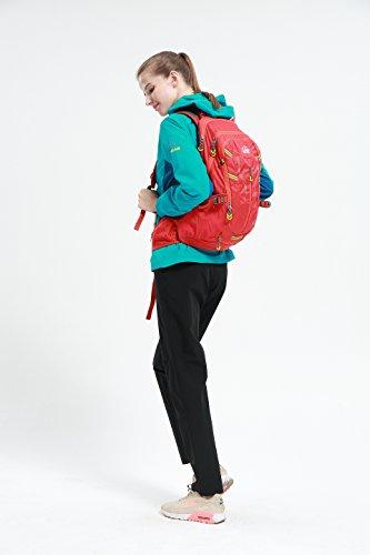 Diamond Candy Sport Taschen , Schlüssel Geldtaschen Karten Geldtasche, Joggen, Kletterei, Wandern, Trekking, Radfahren, Marathon Sport Aktivitäten Red