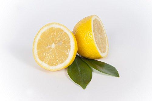 Zitronen frisch, unbehandelt 3 Stück