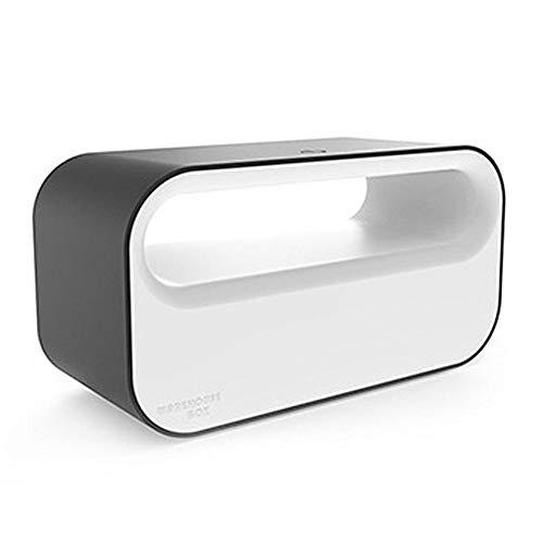 Blue-Yan Multi-Fonction Plug Touch Box de Stockage avec Charge de lumière d'ambiance LED - Base de Bande de Rangement pour Organisateur pour Chargeur de téléphone Portable (2L)