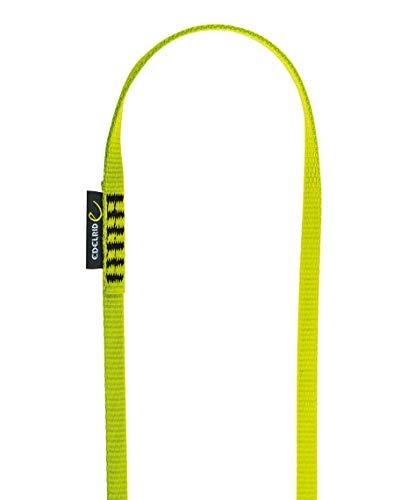 Edelrid Unisex- Erwachsene Schlinge Tech Web Sling 12 mm 12mm VPE10, Oasis (138), 60 cm