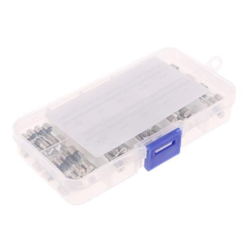H HILABEE 100 Packung Feinsicherung Glas G Sicherung 5x20mm F Glassicherung träge G-Sicherung 250V mit Aufbewahrungsbox (Rohre Glas Geblasen)