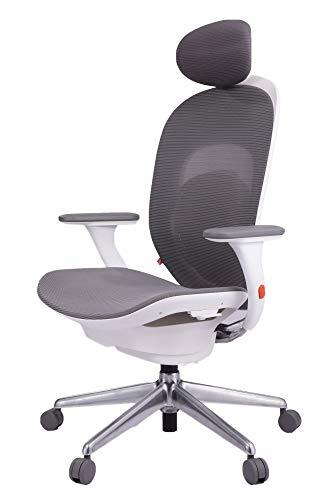 YMI Gamingstuhl Bürostuhl mit Hoher Rückenlehne Schreibtischstuhl verstellbare Kopfstütze Lendenstütze Höhenverstellbarer Gaming Sessel PC Stuhl Ergonomisches Chefsessel mit Armlehne (Weiß)