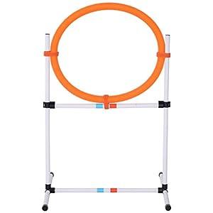 Pawhut Agility Sport pour Chiens Anneau d'agilité et Obstacle 2 en 1 avec Sac de Transport Plastique Blanc Orange