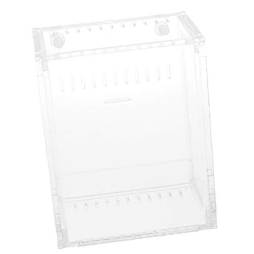 SM SunniMix Acryl Terrarium Reptilien Fütterungsbox für Spinne, Kleine Wasserschildkröte, Frosch, Kornnatter