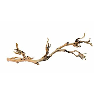 Exo Terra Reptile Forest Branch Large-Large