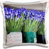 Markets - WA, Seattle, Pike Place Market flowers - Wild - 16x16 inch Pillow Case