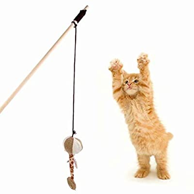 Kitten Cat Teaser Interactive Toy Rod Elastic Rope Linen Pumpkin with Bell
