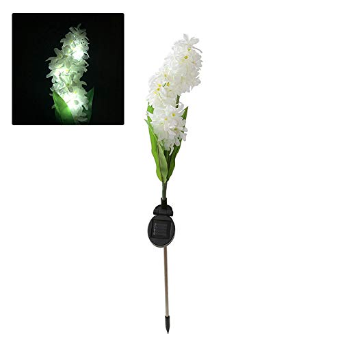 lamta1k Solar Stake Light Outdoor Garden Hyacinth Flower and vibrantly Colored with Real Touch Natural-Looking Patio Fence Pathway LED Lamp - Warm White