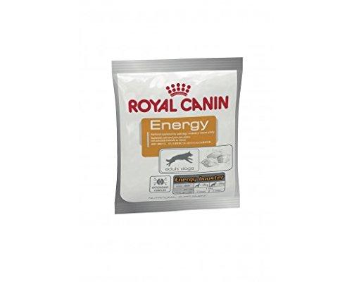 Royal Canin Hundesnack Energy 50g, 30er Pack (30 x 50 g)