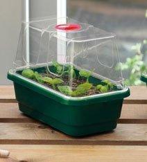 Guirlande Gal18mp Mini High-Dome Propagateur – Vert