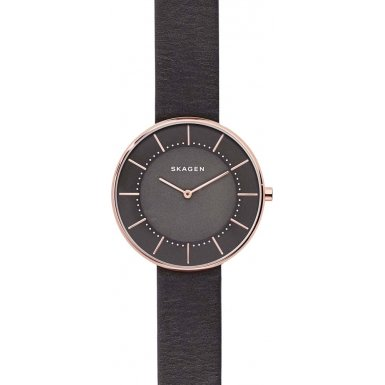 Skagen Women's Watch SKW2613