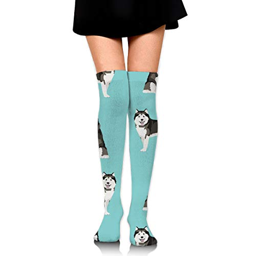 Knee High Socks Alaskan Malamute Dog Breed Pet Turquoise 23.6 Inchs(60cm) Compression Sock Stockings For Women/Girls - Stance-tank