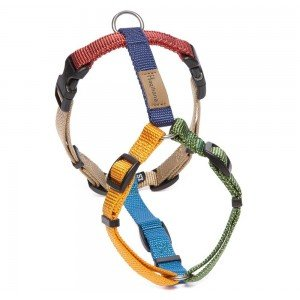 Haqihana Multicolor Dog Harness M