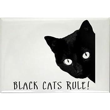 Cat Funny Fridge Magnet birthday gift black and white kitten crazy cat lady