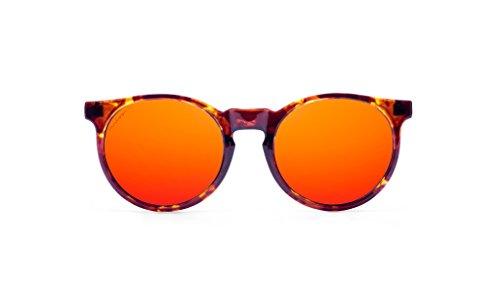MISS HAMPTONS Unisex Sonnenbrillen  Marlon , azul y carey (montura burdeos y carey lente ruby chrome), größe Einheitsgröße