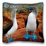 My Honey Taie d'oreiller Taie d'oreiller Bleu fou à pied Bird 18 en * 18 Twin sides