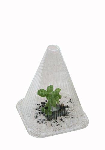 Floraworld Pflanzenhut 10er Set aus Kunststoff, transparent