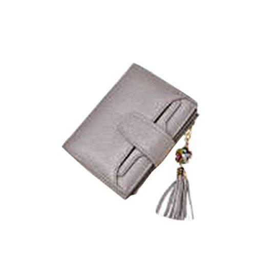 WU Zhi Lady In Pelle Portafogli Borse Pacchetto Di Carta Grey