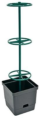Dunkelgrau Pflanzkübel perfekte für alle Kletterpflanzen 16 Lt Kübelvolumen (Inklusive 3 Ringhalter, einfachste Montage!) mit Integrierter Wasserspeicher (je Kübel 2 Lt) von Verdemax - Du und dein Garten