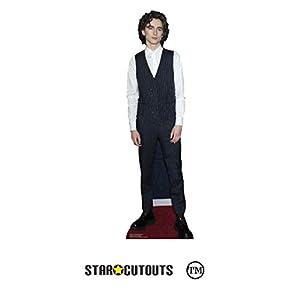 Star Cutouts Ltd Cutouts CS837 Timothee Chalamet King Star-Mini chaleco (89 x 26 cm), multicolor