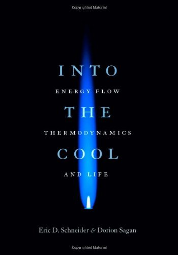 Into the Cool: Energy Flow, Thermodynamics, and Life by Eric D. Schneider (2005-06-01)